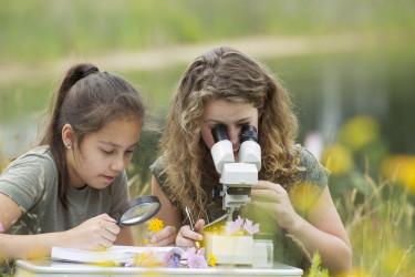 věda, technické vzdělávání